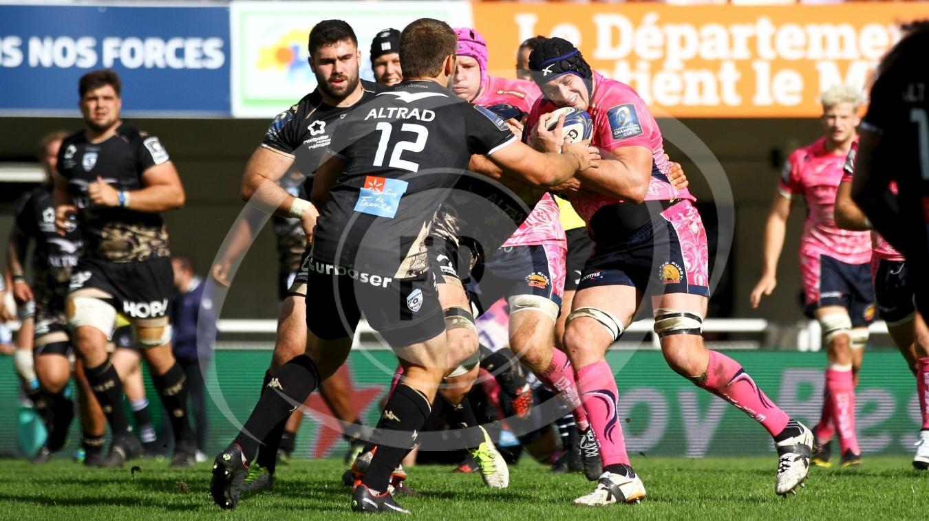 Montpellier vs Exeter - Fotografia de Rugby,