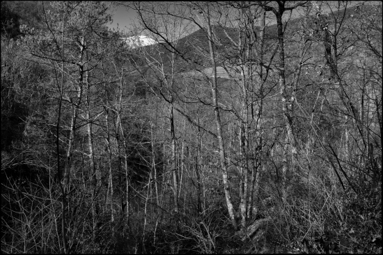 11 de gener de 2020. El Puigmal des de Can Barratort