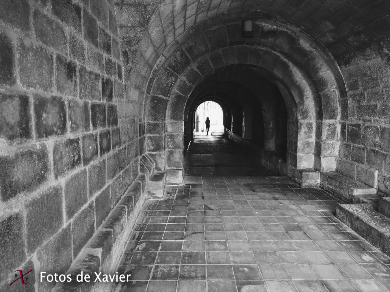 D'altres temps - Blanco y negro - Fotos de Xavier. Fotografia de naturaleza y paisaje en blanco y negro. Xavier Linares