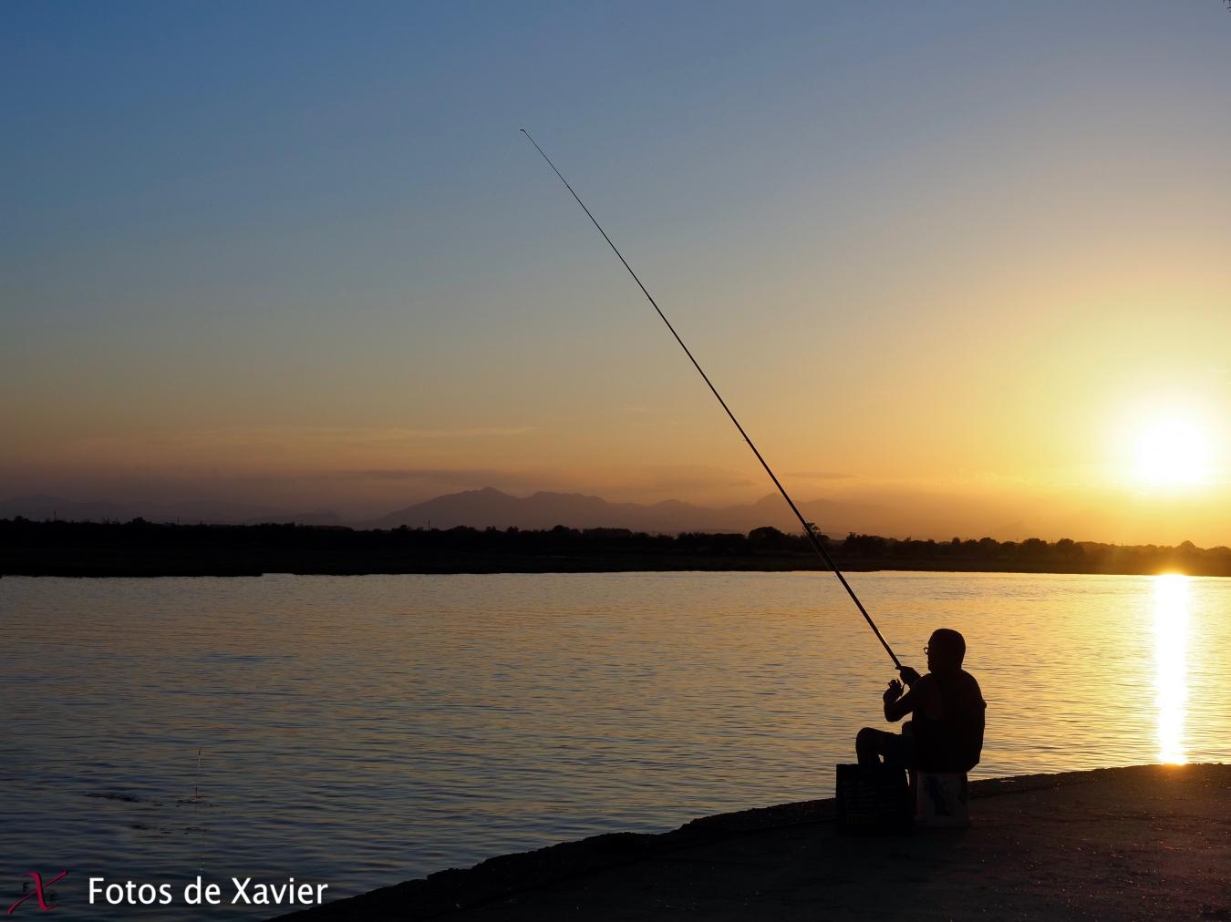 Contra llums - Luz - Fotos de Xavier. Fotografia de naturaleza y paisaje. Xavier Linares