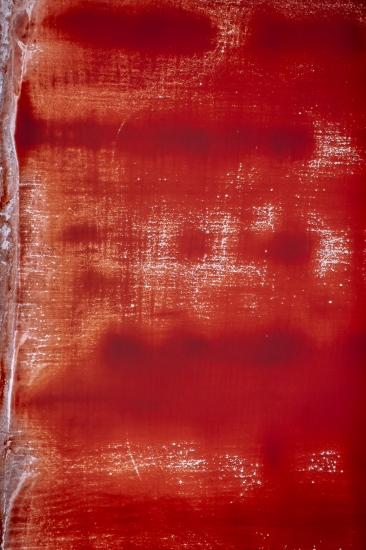 Sobre rojo 02
