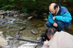 Fotografiando rana pirenaica (Rana pyrenaica). España