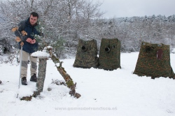 Fotografiando aves en comedero de invierno. España