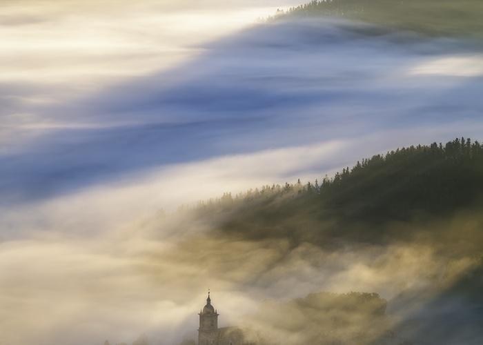 Bosques y montañas