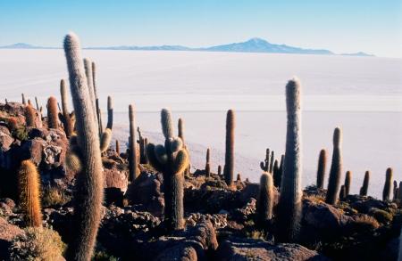 Salar de Uyuni, 2006