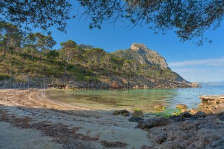 Genuine Majorca