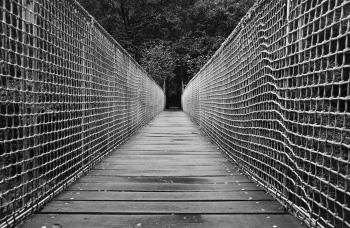 Puente colgante | 2013 | Fragas del Eume - A Coruña, España