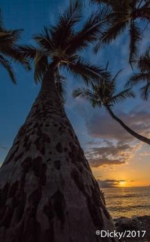 Honokohau Bay, Maui