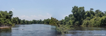DSC_8846-Pano Panoramica Selva Amazonica,Brasil