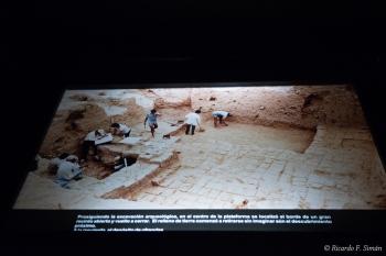 DSC_9591-2 Excavasiones