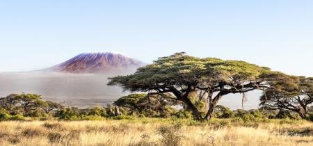 _DSC0232 Africa, Africa V, Ambosseli, Kenya, Monte Kilimanja