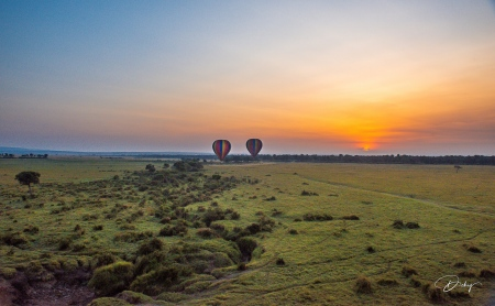 DSC_0131-2 Africa, Africa V, Kenya, Masai Mara, Paisajes, Vi