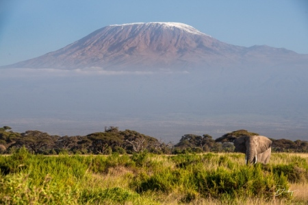 _DSC2780 Africa, Africa V, Ambosseli, Elefante, Kenya, Monte