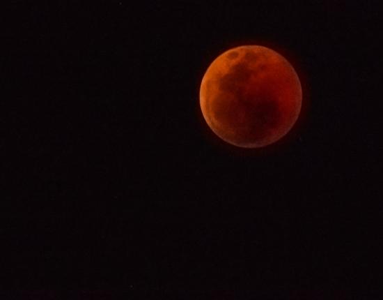 DSC_6168 Africa V, Astronómica, Luna roja, Sur Africa.jpg