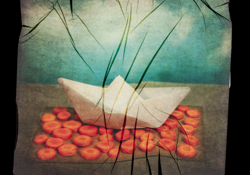 transferencia de emulsion de mar de zanahorias