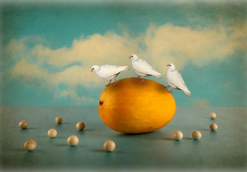 bodegon de melos amariilo con tres palomas